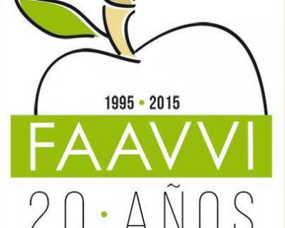 20 aniversario de la FAAVVI ¡20 años de movimiento vecinal unido!