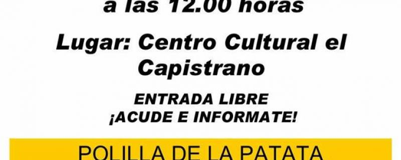 PLAGA DE LA POLILLA GUATEMALTECA DE LA PATATA